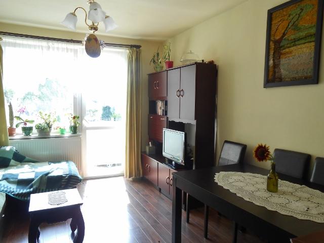Obývací pokoj pohled k oknu
