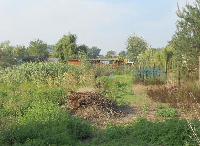 Pravá část zahrady