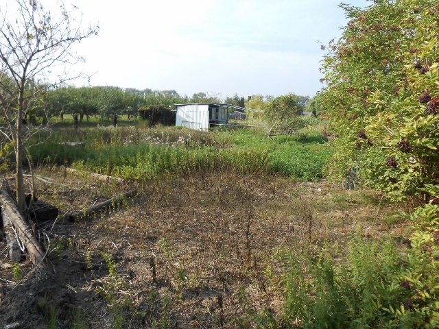 Pohled na zahradu zprava