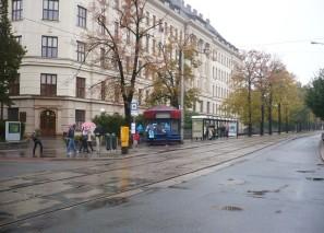 Prodejní stánek Brno, Lesnická