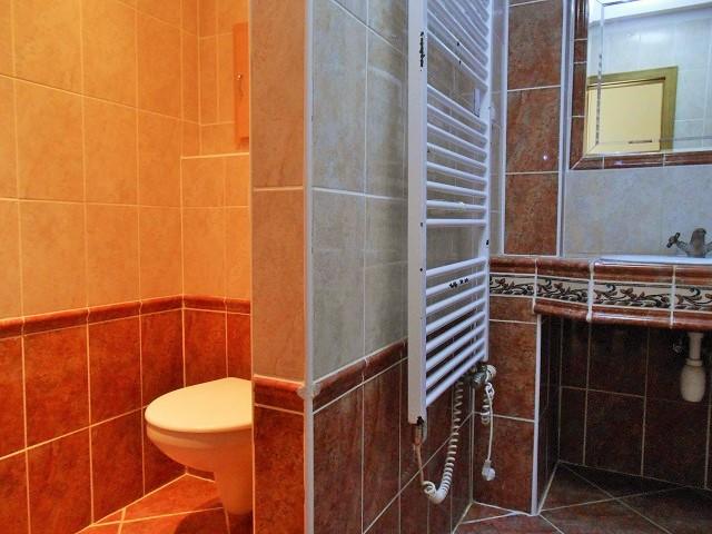 Koupelna s WC, toaleta