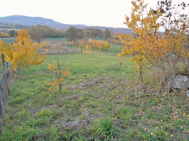 Zahrada 2. část - výhled