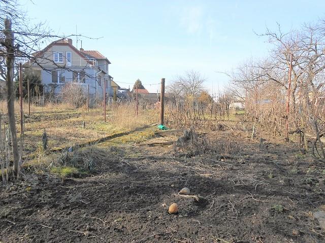 Zahrada k dispozici