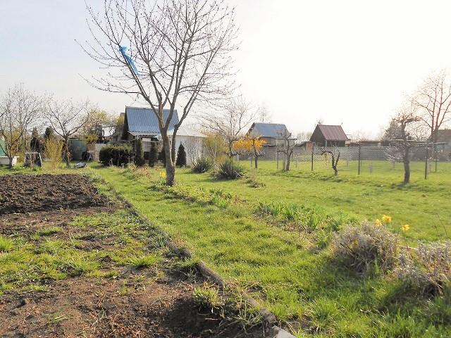 Zahrada, pohled zleva