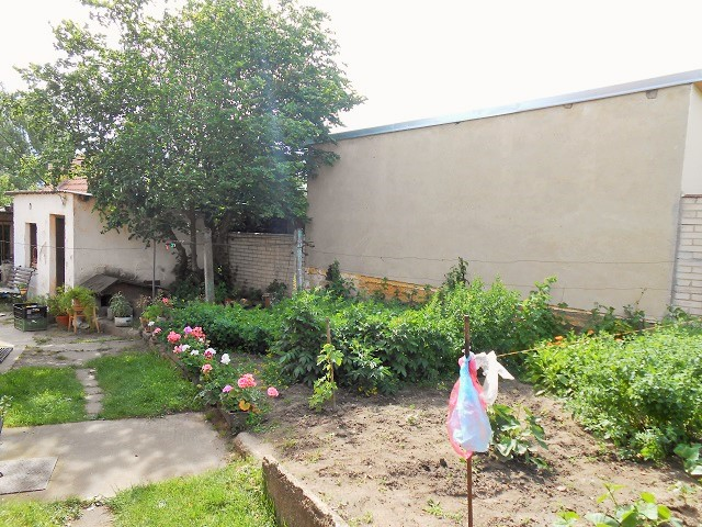 Zahrada, část zadomem
