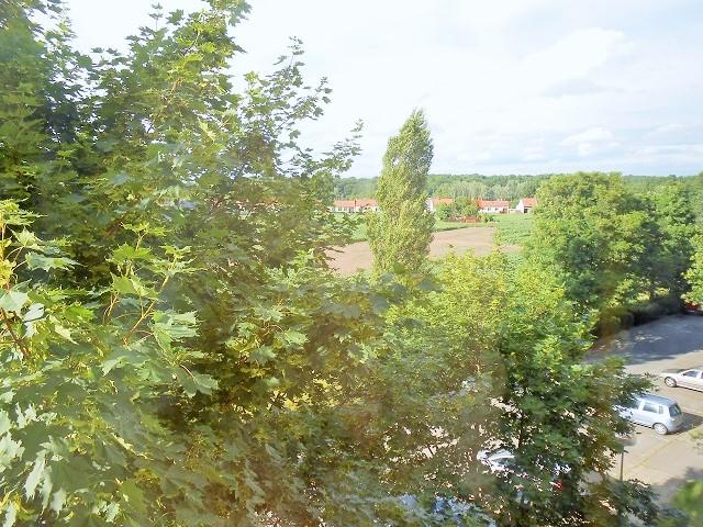 Výhled z okna kuchyně