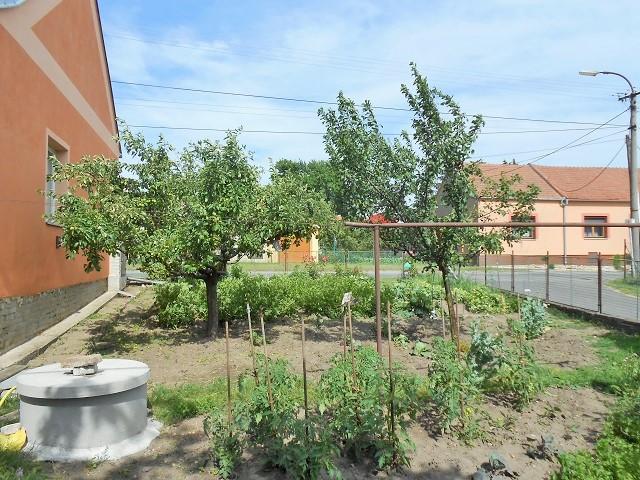 Zahrada se studnou