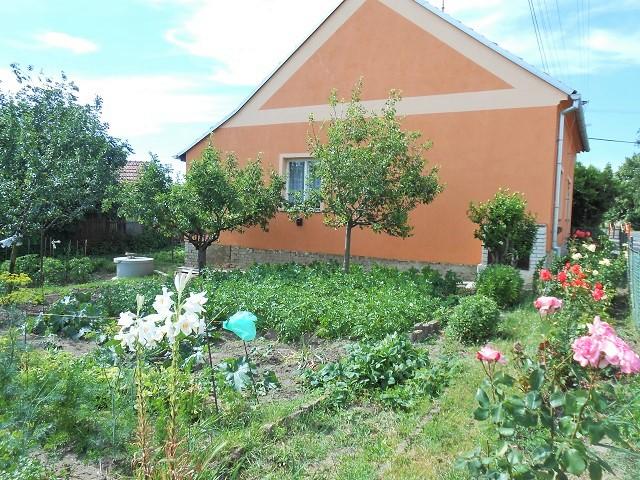 Zahrada, čelní pohled