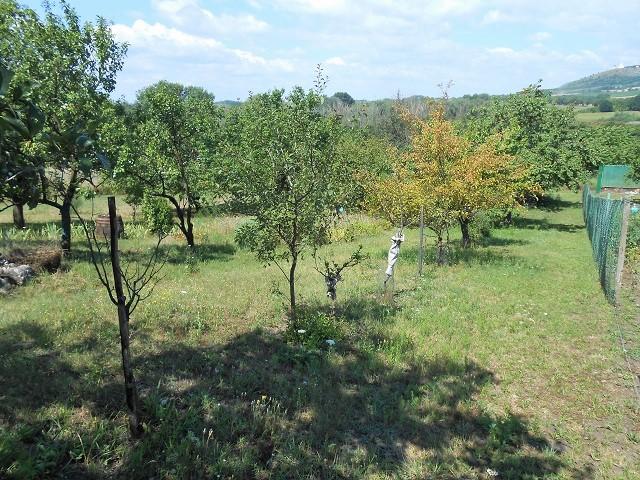 Zahrada, pohled zprava dolů