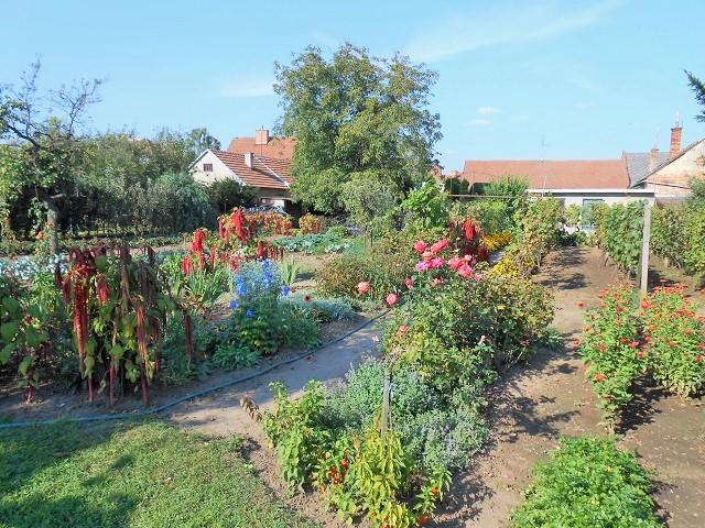 Zahrada, levá část
