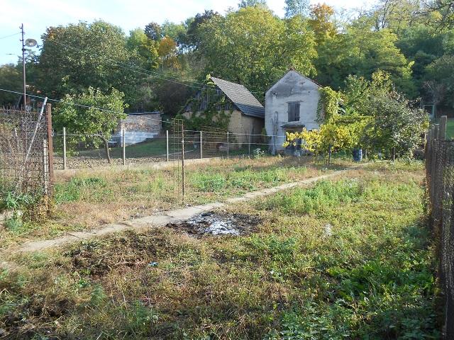 Zahrada, pravá část od domu