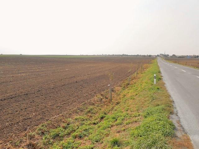 Pohled směr na Moravský Žižkov