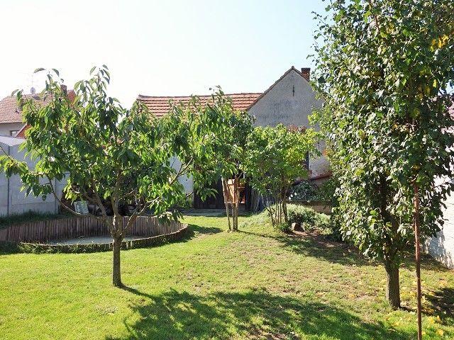 Střed zahrady, pohled k domu