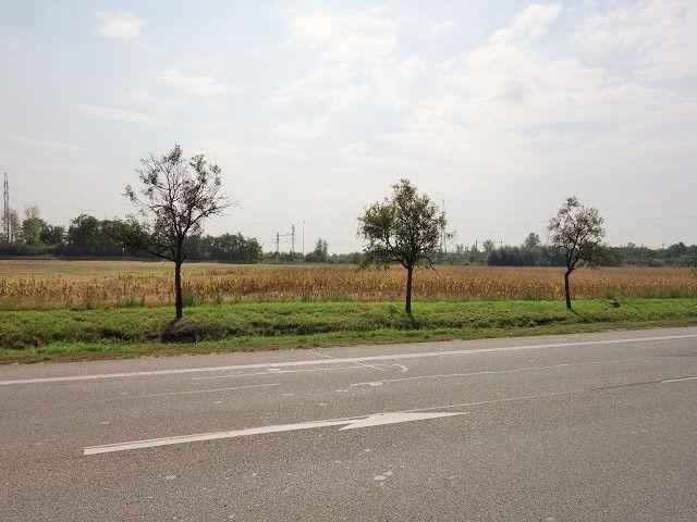 Pohled přes státní silnici k poli