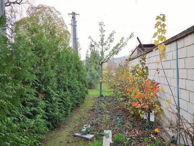 Levá část zahrady od domu