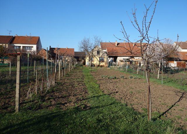 Zahrada, levá zadní část